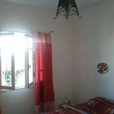 chambre palmier photo prise en 2015