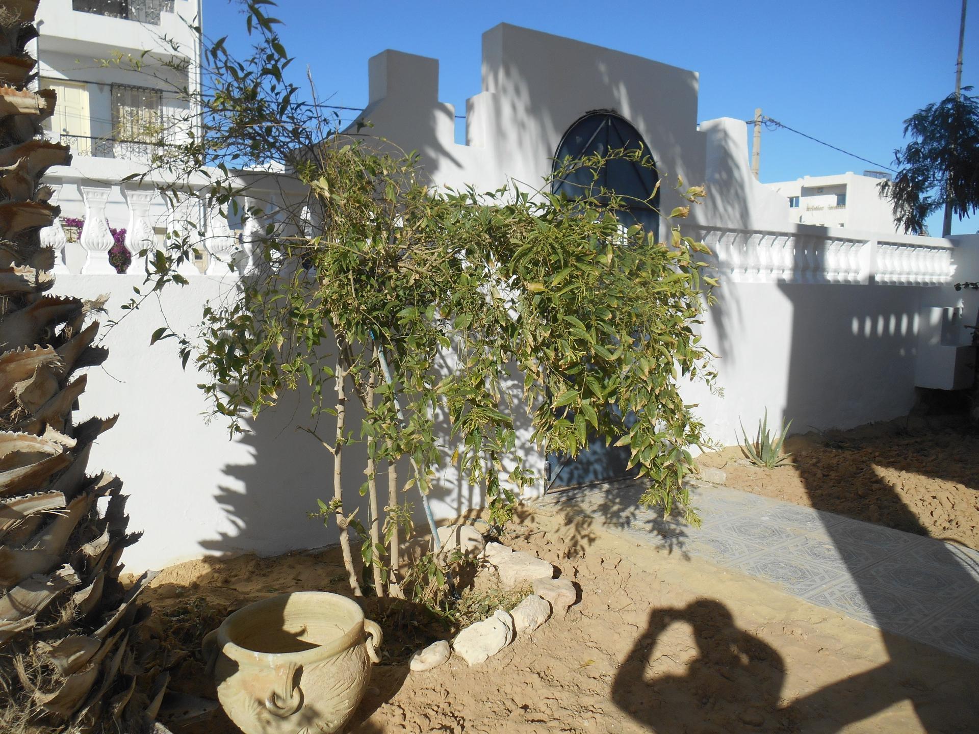 une partie du jardin de la villakhawa , devant le rez de jardin